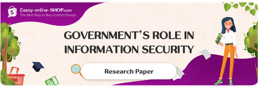 Government's Role in Information Security